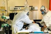 ببینید | پشت پرده ماجرای تجارت اعضای بدن بیماران مبتلا به کرونا چه بود؟