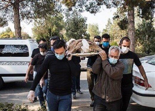احمد نصیرپور، عکاس پیشکسوت مطبوعات، به خاک سپرده شد