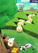 ببینید: گوسفندها هم بورسی شدند!