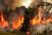 آتشسوزی در جنگلهای گرگان