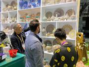 نمایشگاه بینالمللی واردات چین؛ فرصتی برای جهان جهت رصد موفقیت استراتژیک چین علیه کرونا