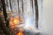 ببینید    گسترش آتش در جنگل توسکستان