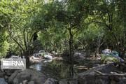 تصاویر | گوشهای از زیبایی ایران؛ روستای گردشگری چنار منگره