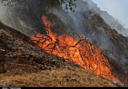 مهار آتشسوزی گسترده در جنگلهای سیاهکل و تالش