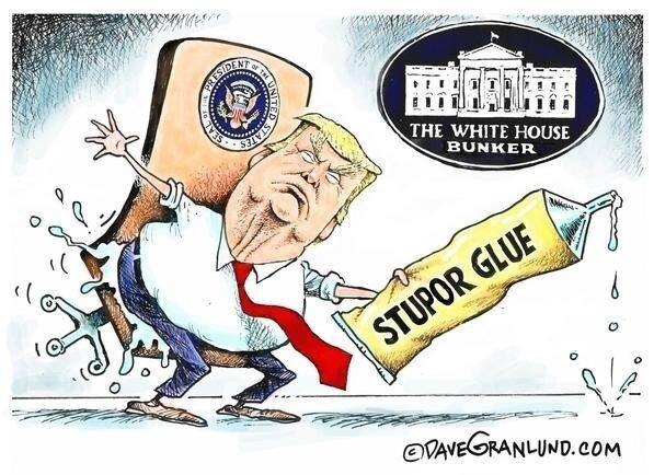 ببینید: ترامپ میخواد بره، اما نمیتونه!