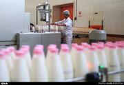 کارخانهها مجاز به افزایش قیمت شیر هستند؟  / شیر گران شده است؟