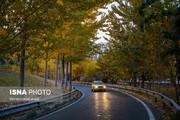 ببینید | قابهایی سحرآمیز از طبیعت تهران در فصل پاییز
