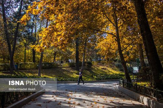طبیعت تهران در فصل پاییز