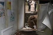 تصاویر | ریزش کوه و تخریب مدرسه در آستارا