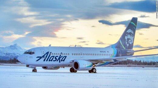 تصادف هواپیما با خرس؛ موتور هواپیما غر شد/ عکس
