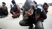 معتادان متجاهر در نوروز جمعآوری میشوند
