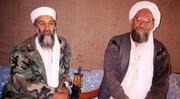 ببینید | دوست صمیمی بنلادن و رهبر القاعده کشته شد