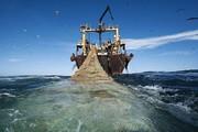 ببینید | توقیف شناور غیر مجاز صید ترال در بندر جاسک