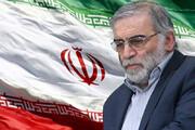 ببینید | تجمع خبرساز مردم خشمگین در پی ترور شهید فخریزاده در میدان پاستور تهران