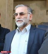 دیدگاه مهم نخست وزیر پیشین سوئد به اهداف ترور دانشمند هسته ای ایران