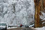 ببینید | تصویری رویایی از بارش برف در جاده دالخانی در ارتفاعات رامسر