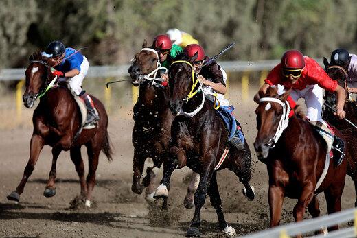 ببینید | لحظه قهرمانی اسب ایرانی در جایزه بزرگ شارجه