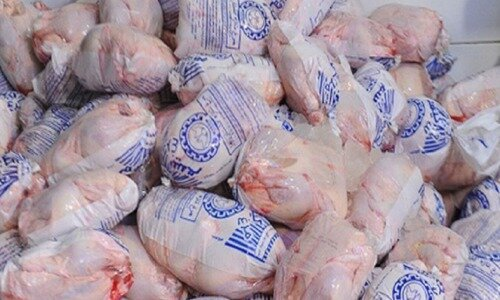 مرغداران ۳۰درصد تولید خود را به استان اختصاص دهند