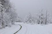 ببینید |  تصاویر بارش سنگین برف درجاده هراز
