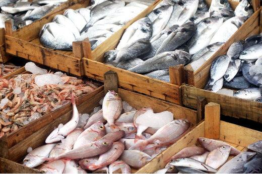 پرفروشترین ماهی در پایتخت کدام است؟