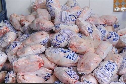 روزانه ۳۰تن مرغ منجمد در قزوین توزیع میشود