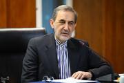 ولایتی: مخالفان رابطه ایران و روسیه، غربگرا و غرب باور هستند