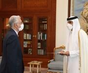 سفیر جدید ایران در دوحه استوارنامه خود را تقدیم امیر قطر کرد