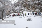 بام ایران در ۱۰ درجه زیر صفر یخ بست