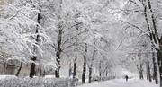 هشدار هواشناسی درباره احتمال اختلال در سفرهای جادهای و هوایی