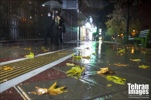 ورود دو سامانه بارشی جدید به کشور طی این هفته/ کدام استانها بارانی میشوند؟