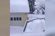 ببینید   ویدیویی لذتبخش از نحوه نشستن برف سنگین در نیویورک