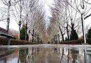افزایش ۲۷ درصدی بارشهای اصفهان نسبت به سال گذشته