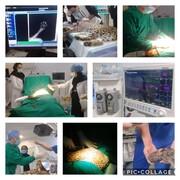 دست پلنگ ایرانی که در تله افتاده بود قطع شد