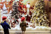 ببینید   قیمت باورنکردنی درخت کریسمس در بازار تهران