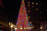 ببینید   بهترین جشنهای کریسمس و سال نو در یک قاب