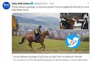 ببینید   ارسال عکس با اسب سریعتر از اینترنت