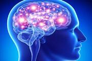آسیب غیرقابل جبران کرونا به  دستگاه عصبی