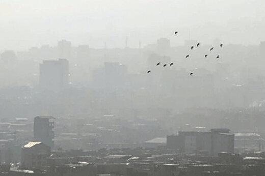 آیا نیروگاههای تهران مازوت میسوزانند؟/ عامل آلودگی هوای پایتخت چیست؟
