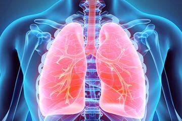 چند توصیه برای مراقبت از ریه ها / خوردنی های مفید و مضر برای ریه کدامند؟