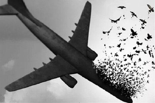 صدور کیفرخواست برای ۱۰ نفر از مسئولان مرتبط با شلیک موشک به هواپیمای اوکراینی