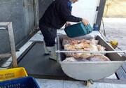 واحد عرضه مرغ و گوشت غیربهداشتی در شهرستان رباطکریم با دستور قضایی پلمب شد