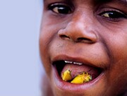 چندشآورترین غذاهای دنیا را بشناسید/ از سوسیس خون تا کیک ماهی+ تصاویر
