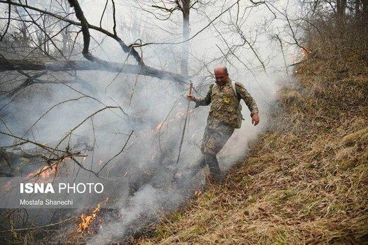 حریق ۵ هکتار از اراضی جنگلی شهرستان نکا