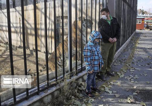بازگشایی باغ وحش ارم تهران