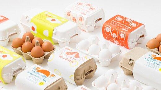 قیمت هر شانه تخم مرغ اعلام شد