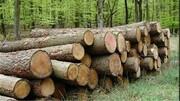 برخورد قاطع یگان حفاظت منابع طبیعی البرز با قاچاقچیان چوب