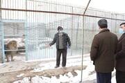 وضعیت باغ وحش ارومیه مناسب نیست