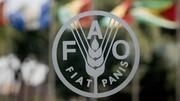 قیمت مواد غذایی رکورد ۷ ساله را شکست