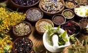 ببینید | گیاهان جادویی که مشکلات ریوی و تنفسی را درمان میکند
