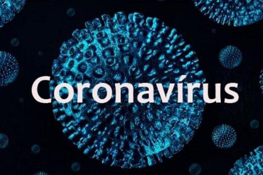 ببینید | هشدار ترسناک جهانپور در خصوص خیز چهارم ویروس کرونا